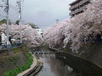 gumyouji6.jpg