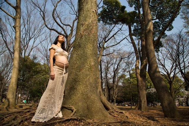 254_381_Tree.jpeg