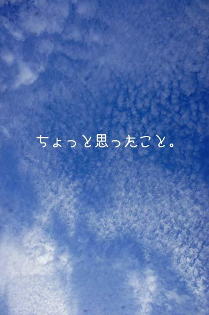 DSC08102.jpg
