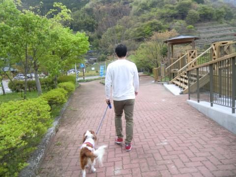 CIMG4618_convert_20150421113914.jpg