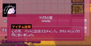 mabinogi_2015_06_11_004.jpg