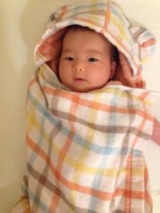 2015年 櫻子4月