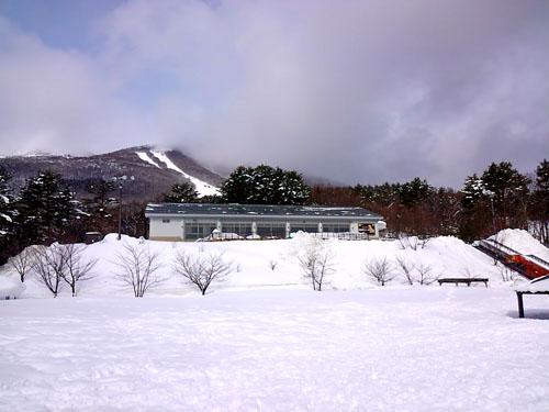 磐梯スノーDogs4