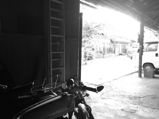 IMG5013.jpg