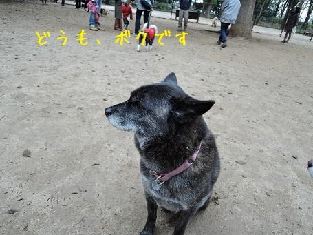 DSCN0337.jpg