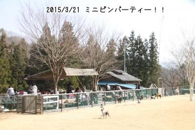 2015_03_21_9999_76.jpg