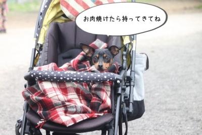 2015_03_29_9999_9.jpg