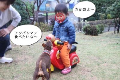 2015_04_04_9999_14.jpg
