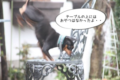 2015_04_04_9999_40.jpg