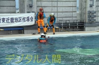 技術訓練水上の部2014 (10)
