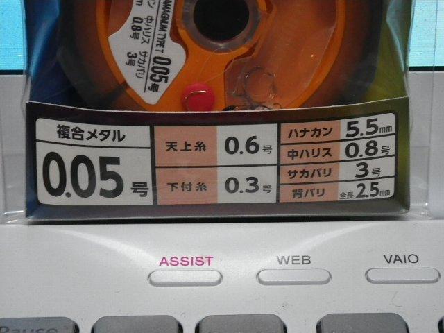 IMGP1256.jpg