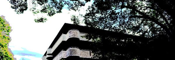 木立とマンション