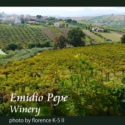 イタリア エミディオペペ140902