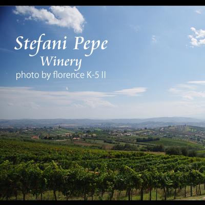 イタリア ステファニペペ140901
