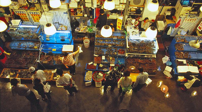114有名な魚市場