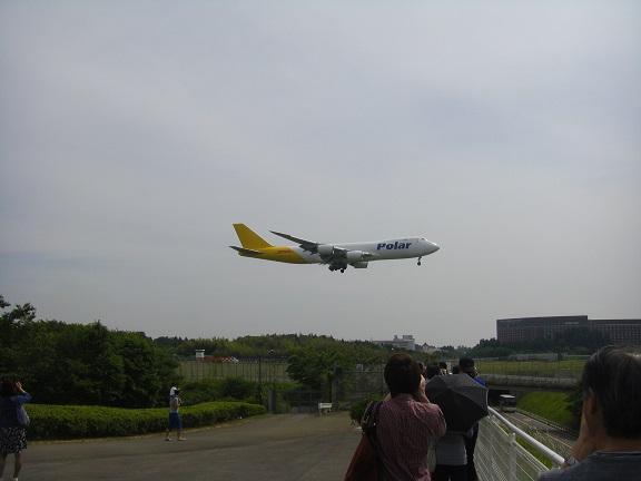 20150523屏風ヶ浦その1 (6)