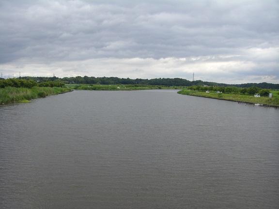 20150606印旛沼 (4)