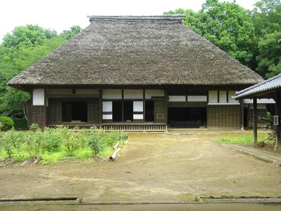 20150606印旛沼 (8)