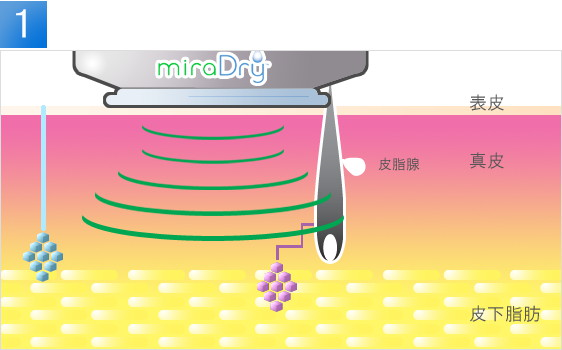 md_about_miraimg2.jpg