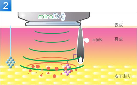 md_about_miraimg3.jpg