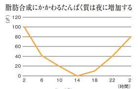 BMAL1_2.jpg