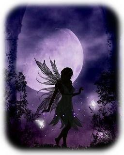 満月と妖精