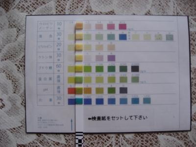 tsukune (400x300)