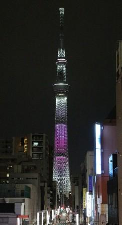 桜色タワー