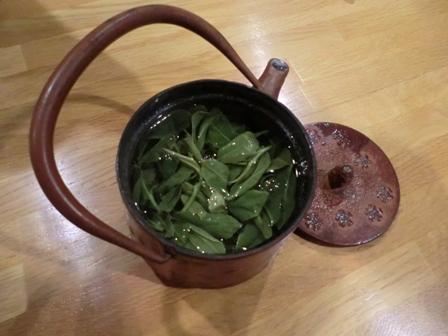 新茶15-3