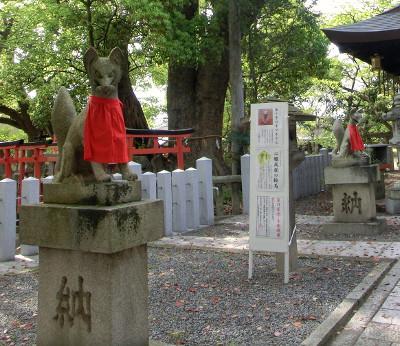 150520-葛の葉稲荷神社-6