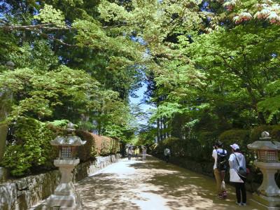 150608-高野山-11