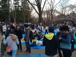 桜井の頭公園宴会