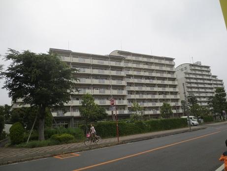 県営新所沢けやき通り団地2