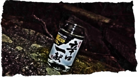 2015 中禅寺湖1 (3)