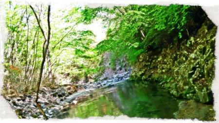2015 鬼怒川水系2 (2)