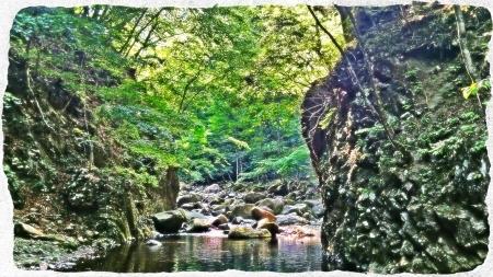 2015 那珂川水系4 (6)