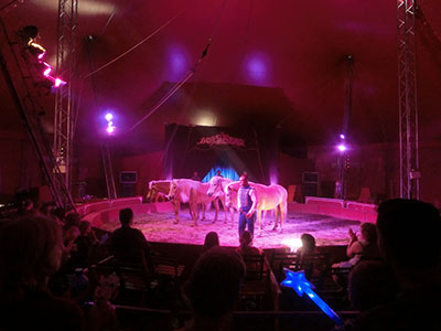 circus03.jpg