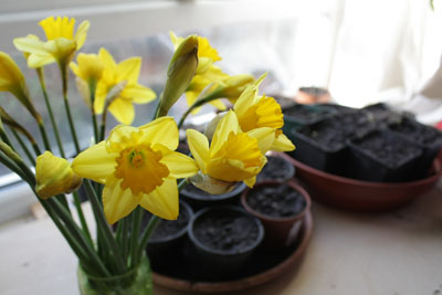 spring201403.jpg