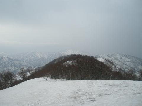 P3290019.jpg