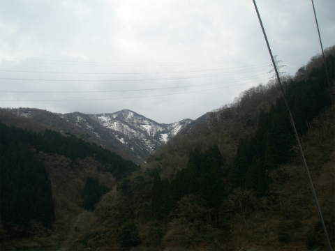 P3290037.jpg
