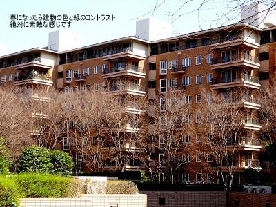 広尾ガーデンヒルズ006