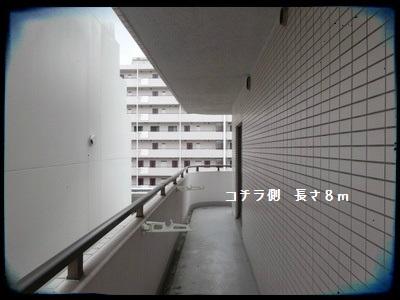 hiranuma2015001.jpg