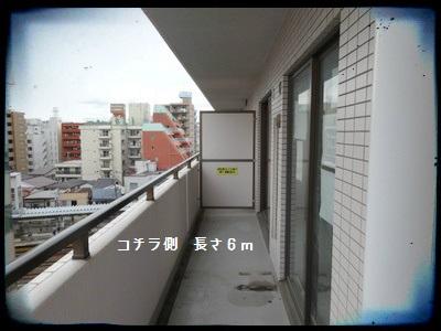 hiranuma2015003.jpg