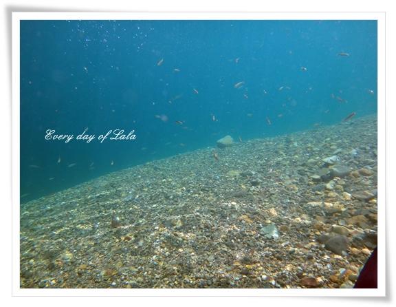水の中へ201508