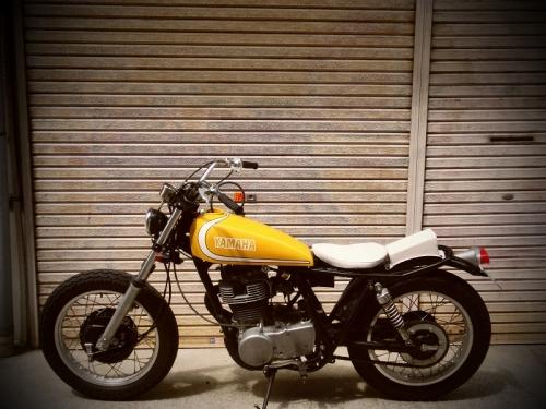 CIMG1950.jpg