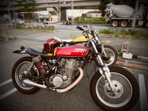CIMG1965.jpg