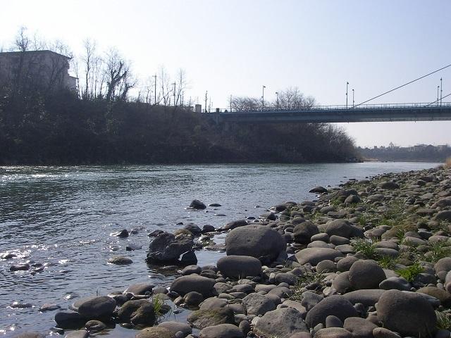 2015年3月17日利根川利根橋右岸下流9自10分頃