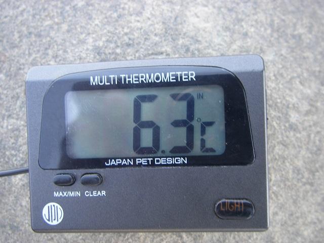 2015年3月27日利根川利根橋右岸下流午前11時30分頃 (大嶋)