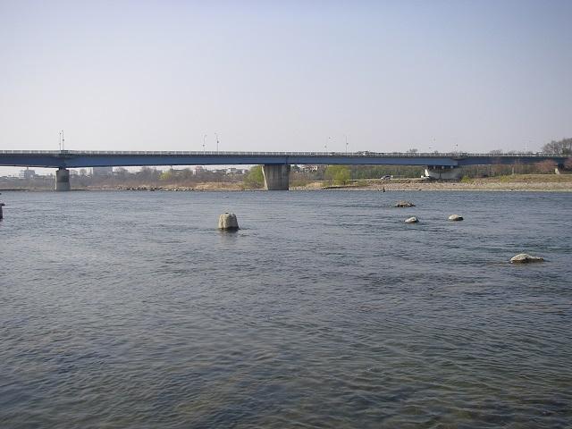 2015年3月30日利根川大渡橋左岸上流8時45分頃(大嶋)