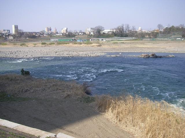 2015年3月30日利根川県庁裏放水路左岸合流午前8時55分頃(大嶋)